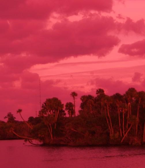 Pink Dusk, c.Susan T. Martin
