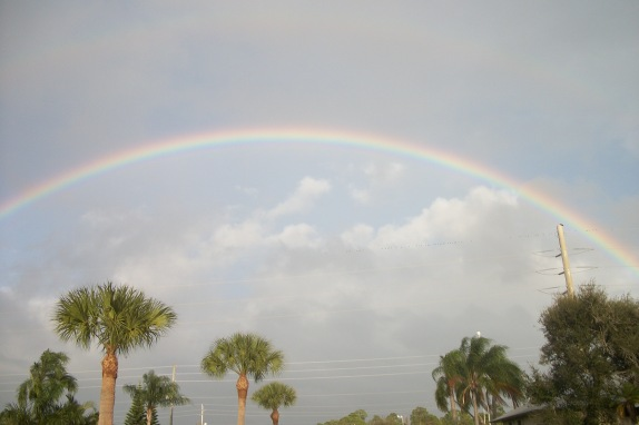 A Promise from God, taken in my front yard, River Park, FL.