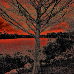 River in Red